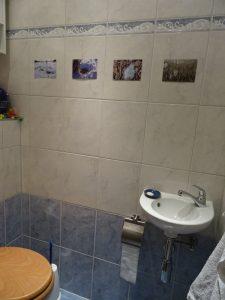 toilet gallery